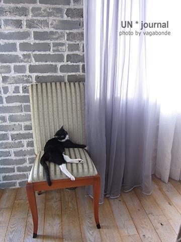 foo&chaise.jpg